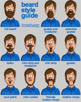 beardstyleguide
